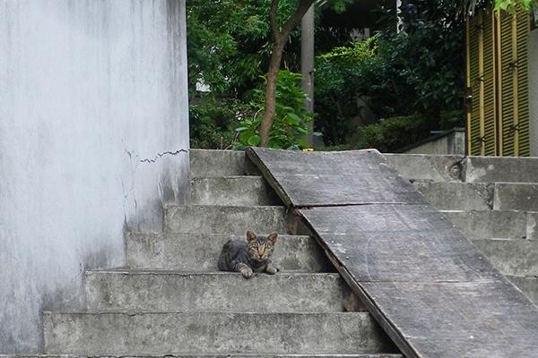タビワン階段