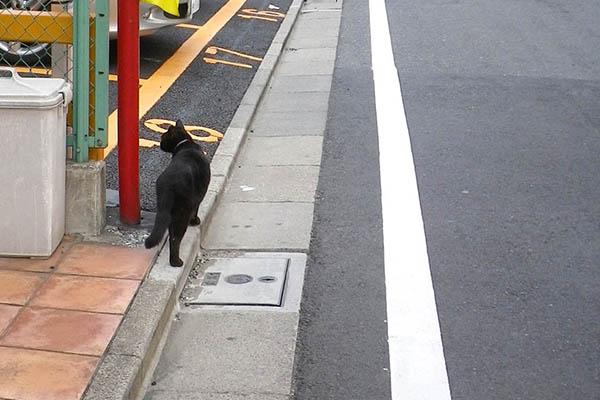 駐車場くーちゃん