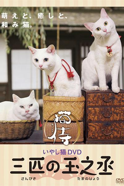 tamanojyo_3cats