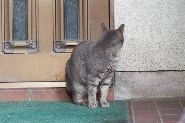 ドアの向こうから男性の声