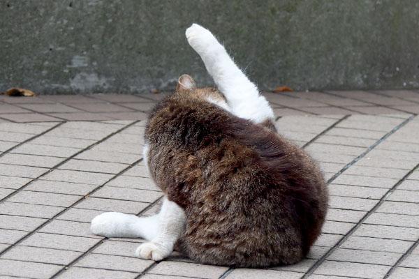 美脚を披露するマリィ