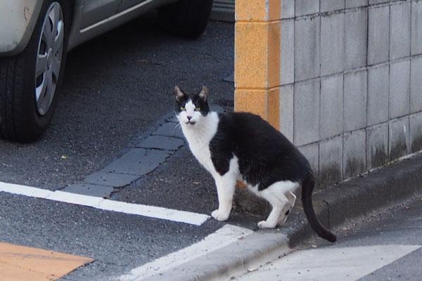 teruma watching me