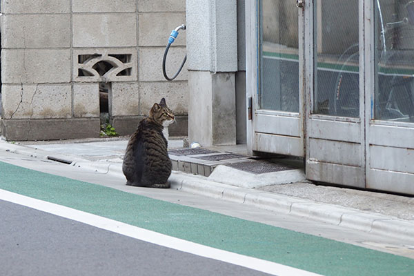 lio sits in front of his house