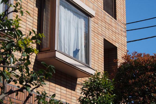 黒猫さん 窓辺