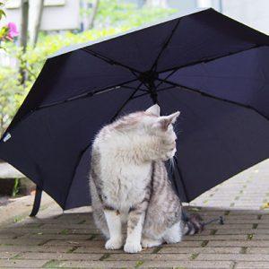 chrom and umbrella